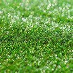 דשא טבעי או דשא סינטטי- כל התשובות